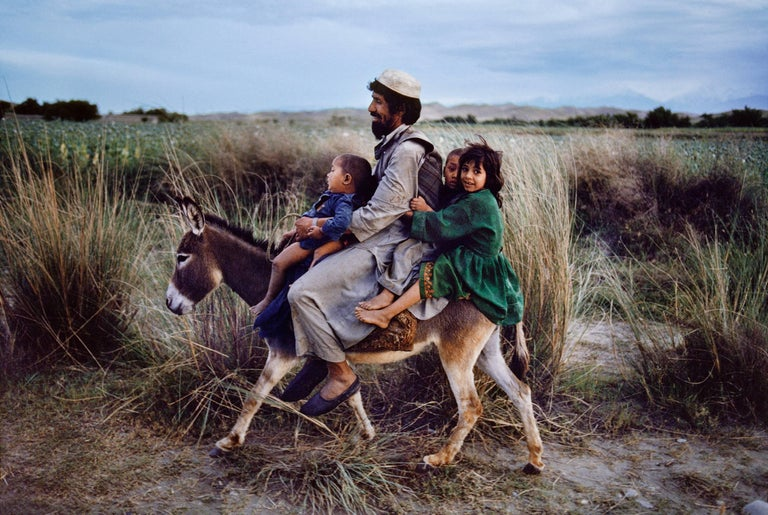 Steve McCurry Color Photograph - Family Rides Donkey, Afghanistan, 2003