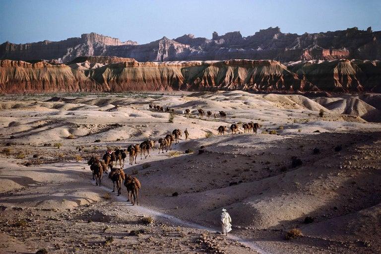 Steve McCurry Color Photograph - Camel Caravan, Southern Afghanistan, 1980