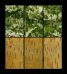 Under the Surface Pond Birch Layers 1
