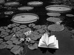 Lecciones De Botánica, Switzerland, 1977