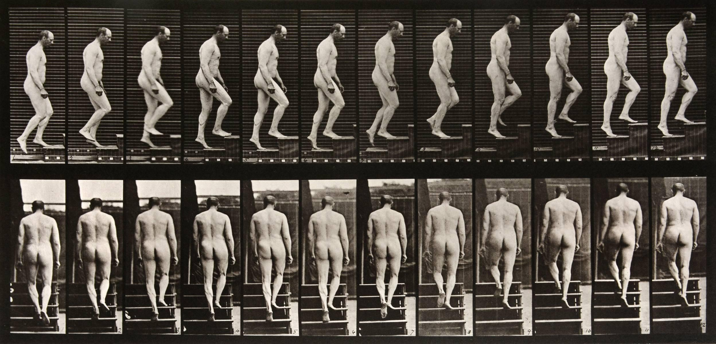 Animal Locomotion: Plate 89 (Nude Man Ascending Staircase), 1887 - Muybridge