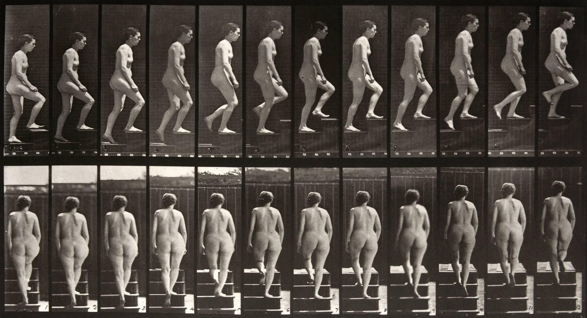 Animal Locomotion: Plate 92 (Nude Woman Ascending Staircase), 1887 - Muybridge