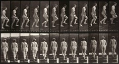 Animal Locomotion: Plate 92 (Nude Woman Ascending Staircase), 1887 - Muybridge