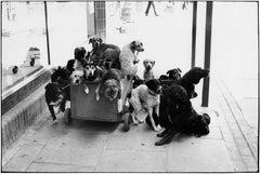 London, England, 1974 - Elliott Erwitt (Black and White Photography)