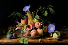 Peaches and Morning Glories, After GG