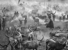 Dinka Cattle Camp of Amak, Southern Sudan, 2006