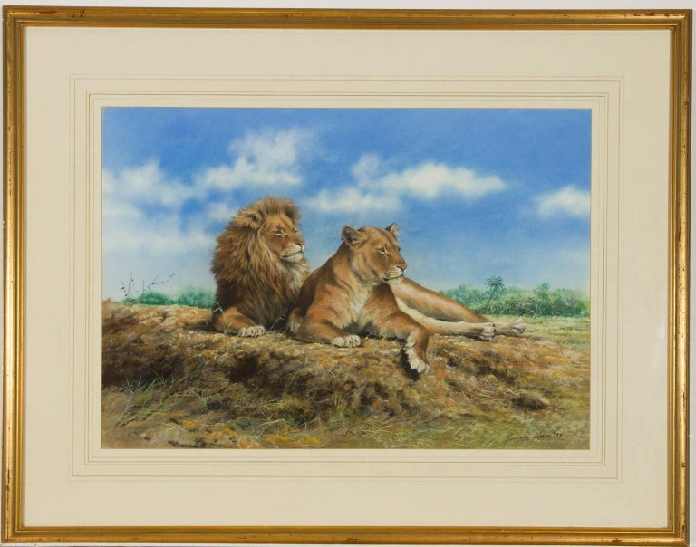 John Seerey-Lester (b.1945) - Signed & Framed British 1979 Pastel, Lions - Art by John Seerey-Lester