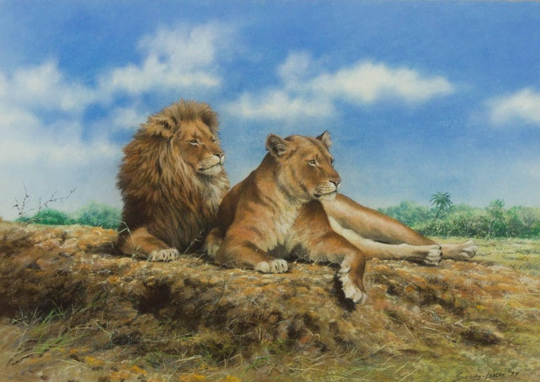 A fine pastel drawing in a high realism style, depicting a lion and lioness. By the well listed British artist John Seerey-Lester (b.1945), signed to the lower right. Presented in a washline mount and simple gilt frame.   Image Size: 36.5 x 52cm
