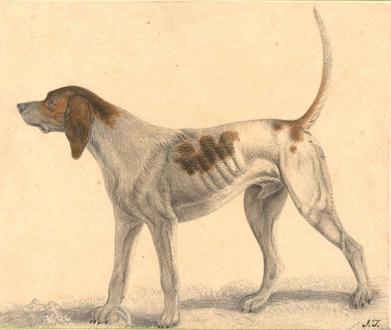 Unknown Animal Art - Embossed Leather 19th Century Sketchbook with Graphite Drawings and Watercolours