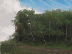 Catskill Trees