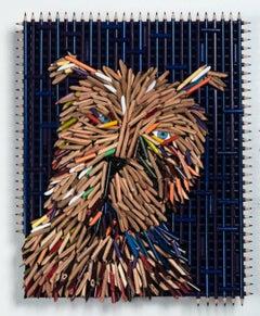 Dog Portrait, Brown Face
