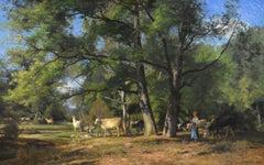 Une matinée en forêt, vaches en marche
