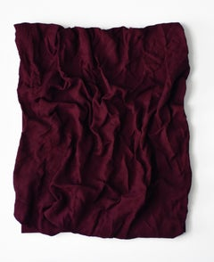 Rasberry Dream Folds