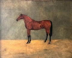 B. Broomhead; Horse Portrait; oil on canvas