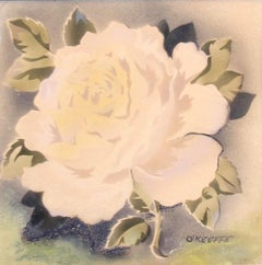 signed O'Keeffe; White Rose; watercolor