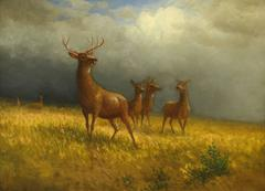Three Deer and a Stag (Monarch of the Plains)