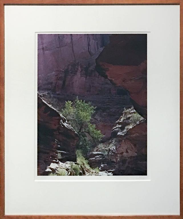 Coyote Gulch, Escalante River, Glen Canyon, Utah - Black Landscape Print by Eliot Porter