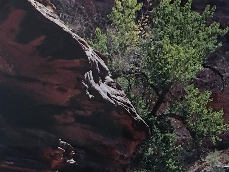 Coyote Gulch, Escalante River, Glen Canyon, Utah For Sale 2
