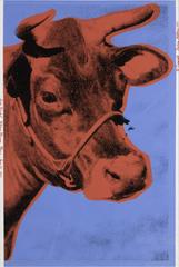 Cow (IIA Blue Background)