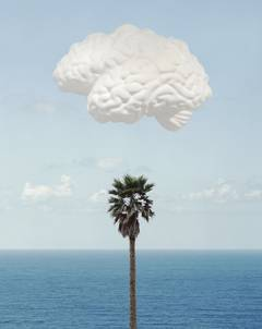 Brain/Cloud (With Seascape and Palm Tree)