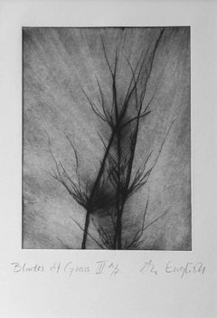 Blades of Grass I: Dry-Point Etching by Ann-Helen English