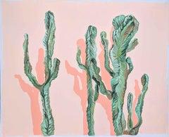 Euphorbia Euphoria