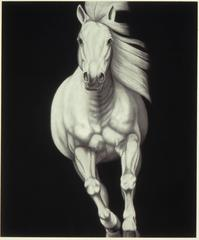 #4 by Joseph Piccillo, Graphite on Canvas, Created 2010