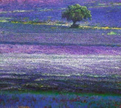The Provence Carpet
