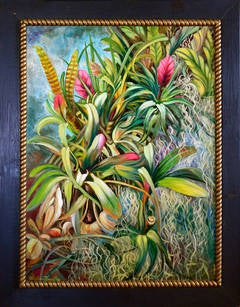 Tropical Bromeliads