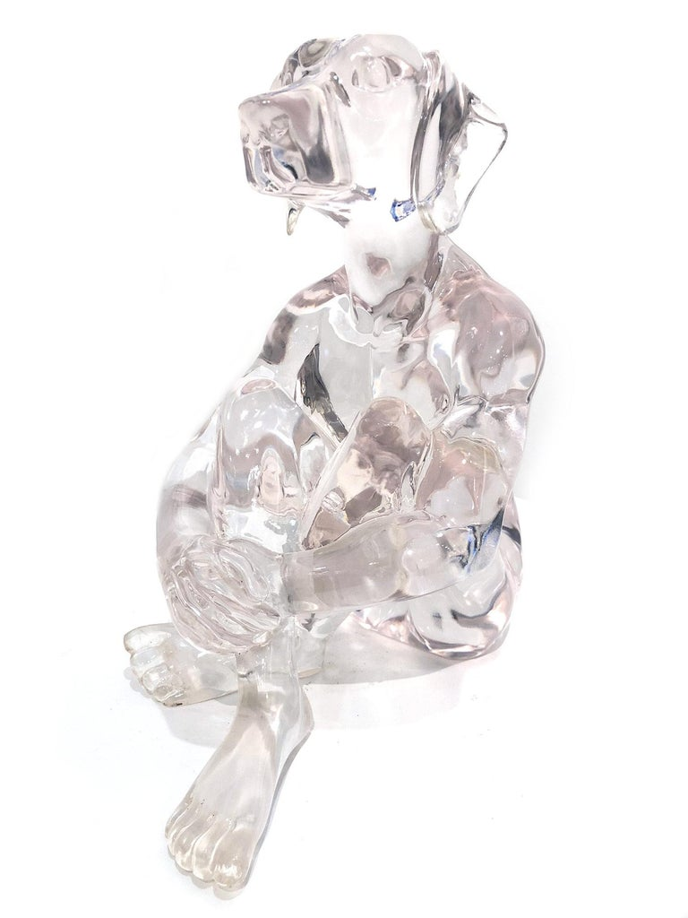 Lolly Dogman (Clear) For Sale 8