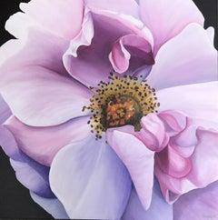 Purple Still-life Paintings