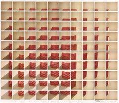 Alla Ricerca del Ritmo Ossessivo - Maurizio Galimberti Polaroid Mosaic Photo