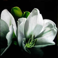 Composizione Verde Cinabro - Carlo Ferrari Phorealistic Flower Painting