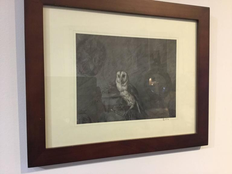 Contemporary photograph/print of a barn owl. The owl is a Victorian piece of taxidermy placed against a Victorian printed fabric. The pattern of the feathers with the background pattern plays with the idea that the foreground is background and vice