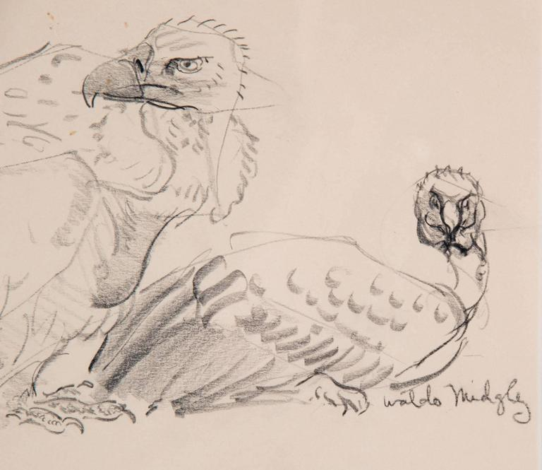 American Two Vultures by Waldo Midgley, 1993 For Sale