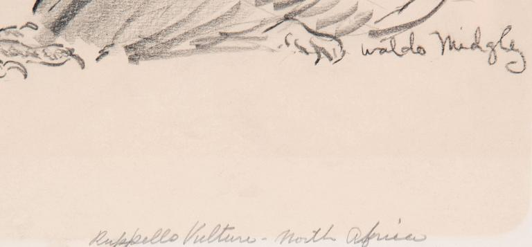 Two Vultures by Waldo Midgley, 1993 In Good Condition For Sale In Salt Lake City, UT