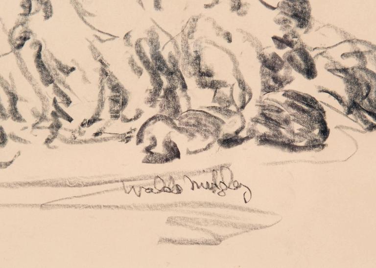 American Hyena 1993 by Waldo Midgley For Sale