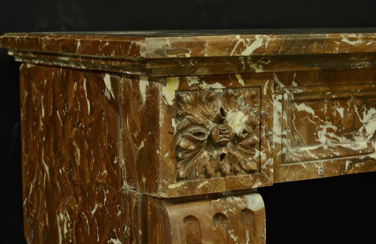 Lovely Small Red Marble Louis XVI Fireplace Mantel For Sale 1