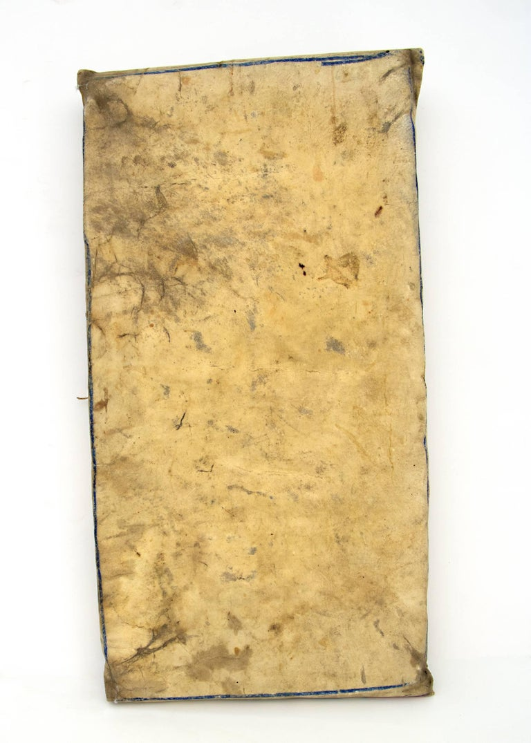 Painted Native American Parfleche Envelope with Abstract Painting, 19th Century, Plateau For Sale