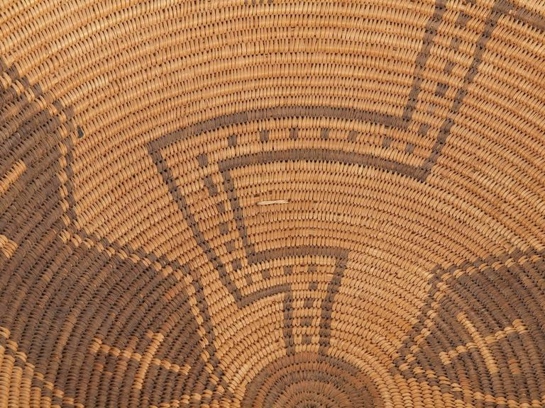 Antique Native American Basketry Bowl, Apache, 19th Century For Sale 2