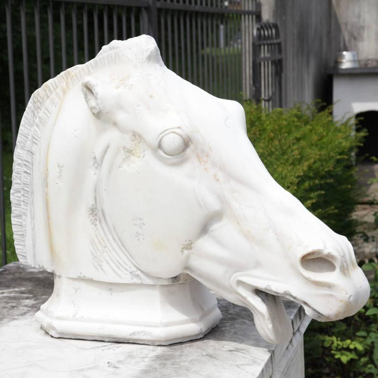 Marble horse head on a base. The eyes are torn open and the mouth is open. The ears as well as the nasal openings are very elaborate. The surface is very fine. Handmade after