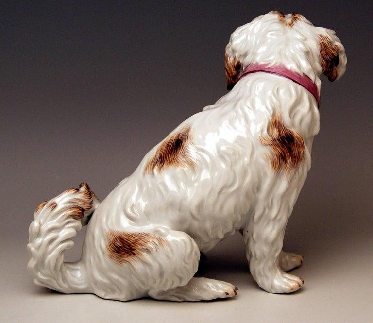 Painted Meissen Dog Figurine Spaniel, Johann Joachim Kaendler Pfeiffer Period 1924-1934 For Sale