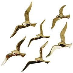 Six Wall-Mounted Midcentury Seagull Bird Brass Sculptures, Austria, 1950s