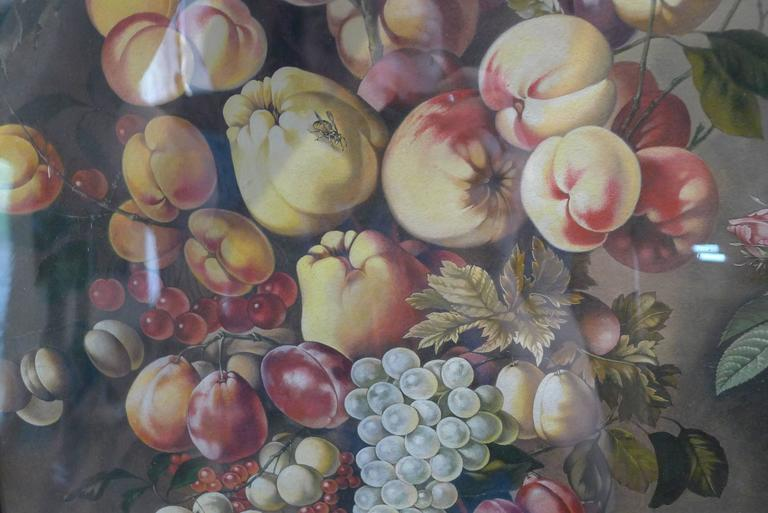 Watercolors Flowers, Fruits and Parakeets In Excellent Condition For Sale In Paris, FR