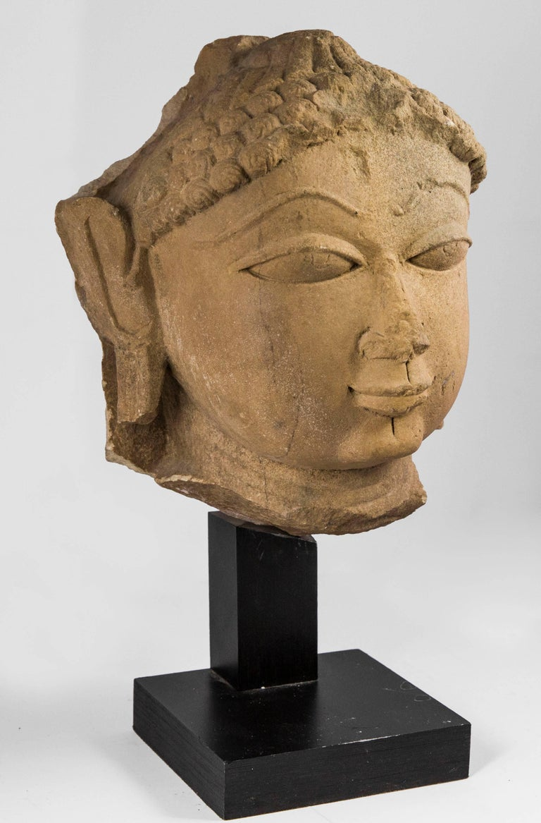 Yellow sandstone head portraying Buddha Shakyamuni with meditative expression. He has a fleshy mouth and large slightly-elongated eyes. His hair is tied back in a bun and his ears are also stretched, this characteristic being typical of Shakyamuni