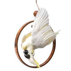 Fine Taxidermy Sulphur-Crested Cockatoo by Sinke & Van Tongeren