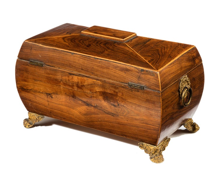 Regency Period Sarcophagus Shaped Tea Caddy For Sale 2