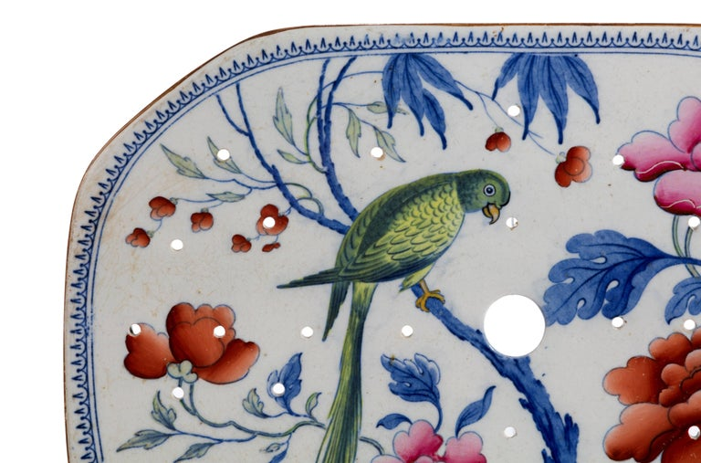 A stone China turkey drainer. Enameled with flowers and a parakeet.   Excellent overall condition.
