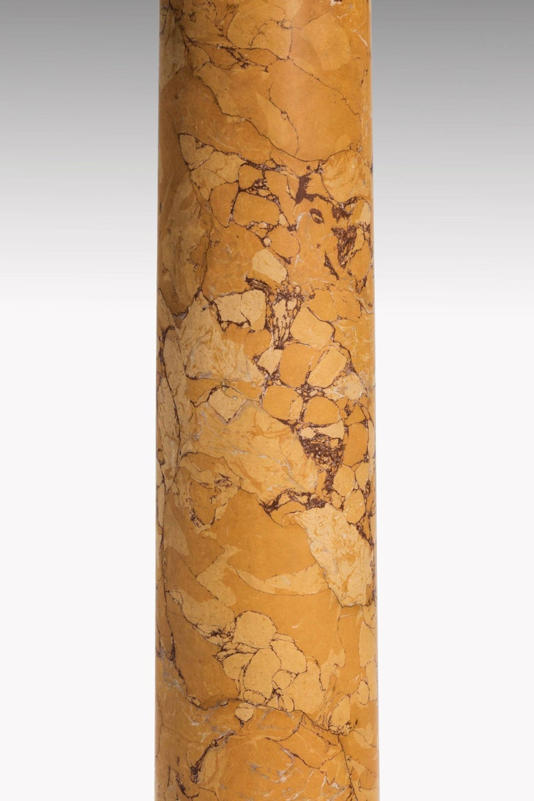 Mid-19th Century Faux Marble Pillar In Excellent Condition For Sale In Peterborough, Northamptonshire