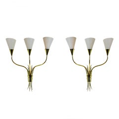 Pair of Wall Lights, Polished Brass, Celluloid Lampshades, France, 1955-1960